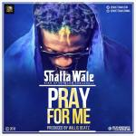 MUSIC: Shatta Wale – Pray For Me (Prod. by Willis Beatz)