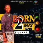 MIXTAPE: Dj Bee – Born 2 Mix Vol 6 | @DjBeeNaija @CityMusicRecord