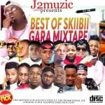 MIXTAPE: GARA MIXTAPE (Best Of Skiibii) Mixed By DJ J2 @Youngestdj_j2