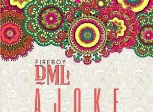 Photo of Download: Fireboy Dml – Ajoke