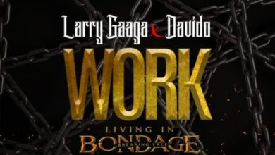Photo of Larry Gaaga x Davido – Work