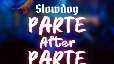 Photo of Slowdog – Parte After Parte (Cover)