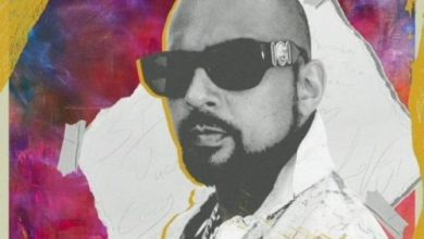 Photo of Sean Paul ft YG – When It Comes To You (Remix)