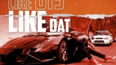 Photo of Download: Mr P – Like This Like That