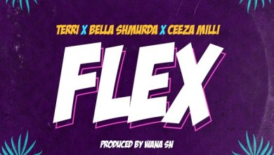 Photo of Lakizo ft Terri, Bella Shmurda & Ceeza Milli – Flex