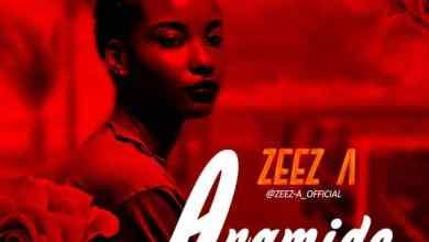 Photo of Zeez A – Aramide