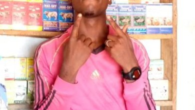 Photo of Rock Model – If No Be God