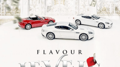Photo of Flavour – Levels