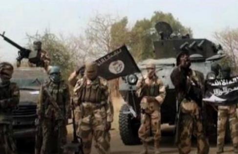 Borno : Boko Haram kills scores in fresh attacks