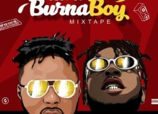 Dj Baddo Best Of Burna Boy Mix 2019