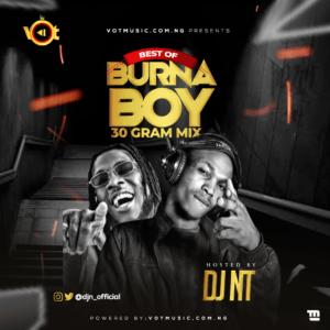 DJ NT – Best Of Burna Boy Mixtape 2020 (30 Gram Mix)