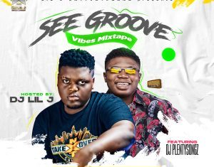 DJ Lil J x DJ PlentySongz - See Groove Mixtape 2020