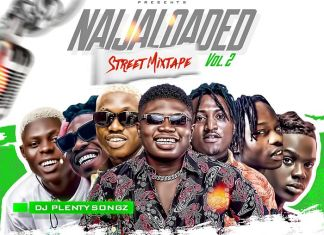 DJ PlentySongz – Naijaloaded Street Mix (Vol.2) 2020