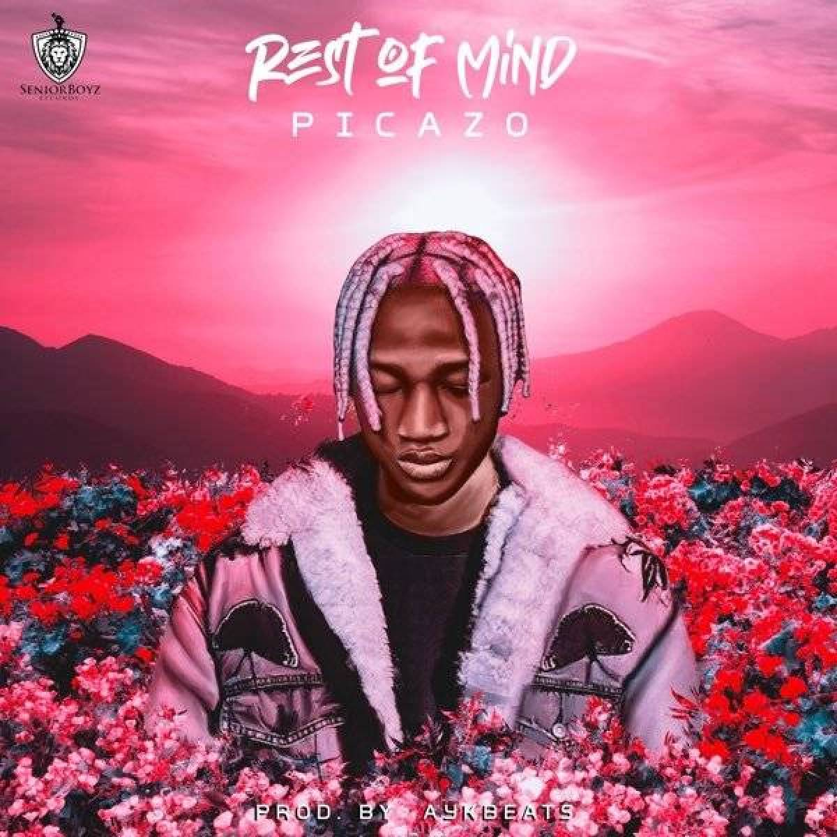 Download Mp3 Picazo – Rest Of Mind