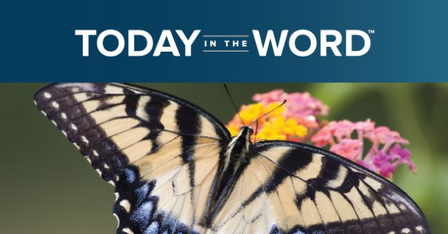 An Evangelist's Heart: Joy