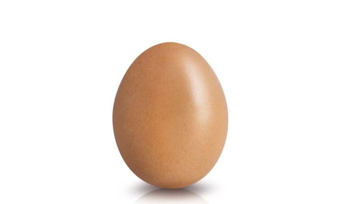 Instagram Record Breaking Egg