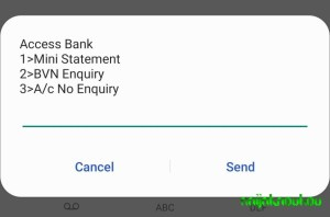 Check Access Bank Account Number (3)