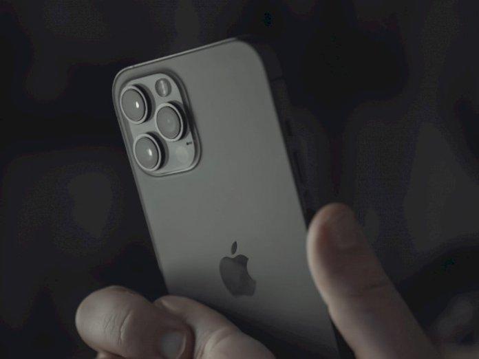 iPhone 12 Pro Rear