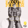 "Wole DSB – ""Excuse Me Sir"""