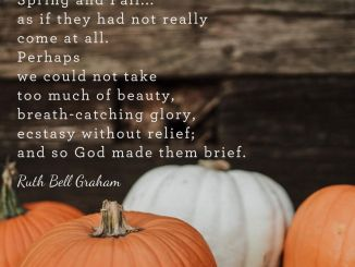 Billy Graham Devotional 23 October 2019