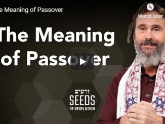 Rabbi Schneider Sermon - The Meaning of Passover