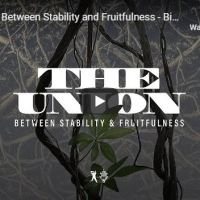 "Sermon: TD Jakes - ""The Union Between Stability and Fruitfulness"""