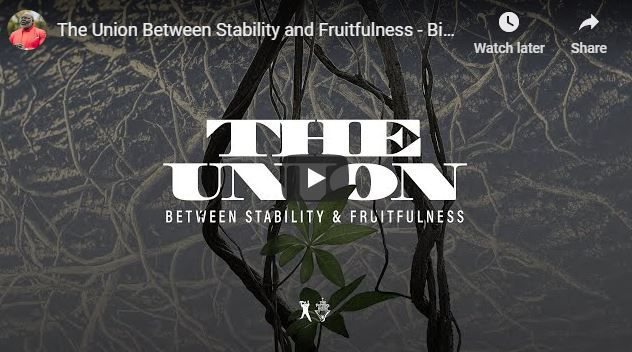 TD Jakes Sermon - The Union Between Stability and Fruitfulness