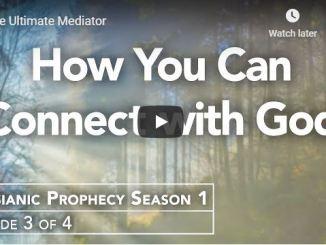 Rabbi Schneider Sermon - The Ultimate Mediator - May 11 2020