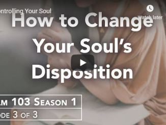 Rabbi Schneider Sermon - Controlling Your Soul - June 8 2020