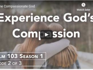 Rabbi Schneider Sermon - The Compassionate God - June 2020