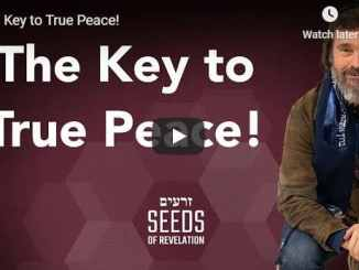 Rabbi Schneider Sermon - The Key to True Peace - July 2020