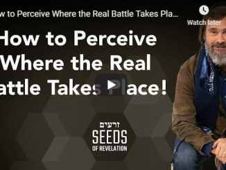 Rabbi Schneider - How to Perceive Where the Real Battle Takes Place