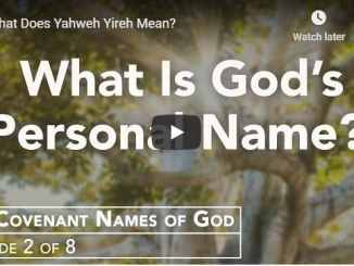 Rabbi Schneider - What Does Yahweh Yireh Mean