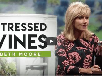 Beth Moore Sermons 2021 - Stressed Vines