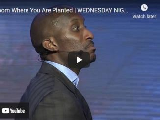 Pastor Dharius Daniels: Bloom Where You Are Planted
