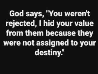 Daily Devotional By Pastor Rick Warren October 26 2021