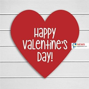 happy valentine day naijapalaba