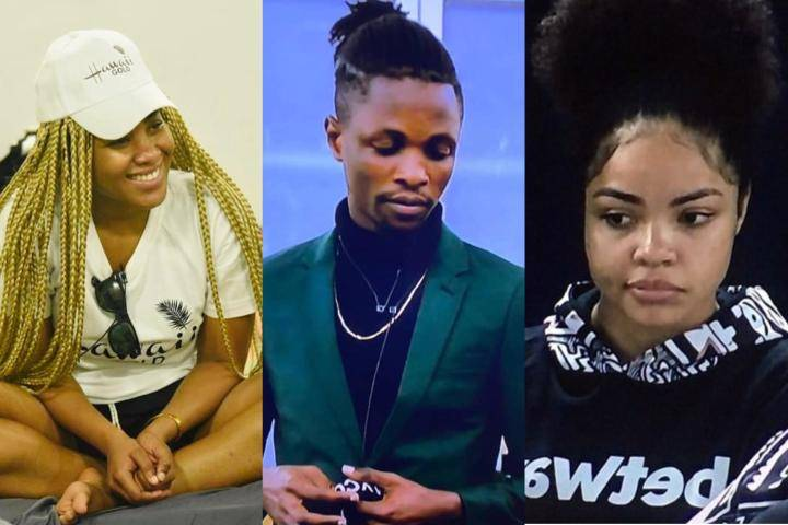 BBNaija 2020: See 7 Housemates That Has Never Been In The Bottom Voting Chart, One Of Them Might Win