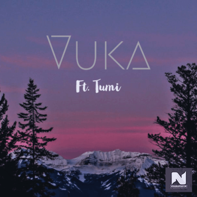 Phonomental MusiQ - Vuka Ft. Tumi