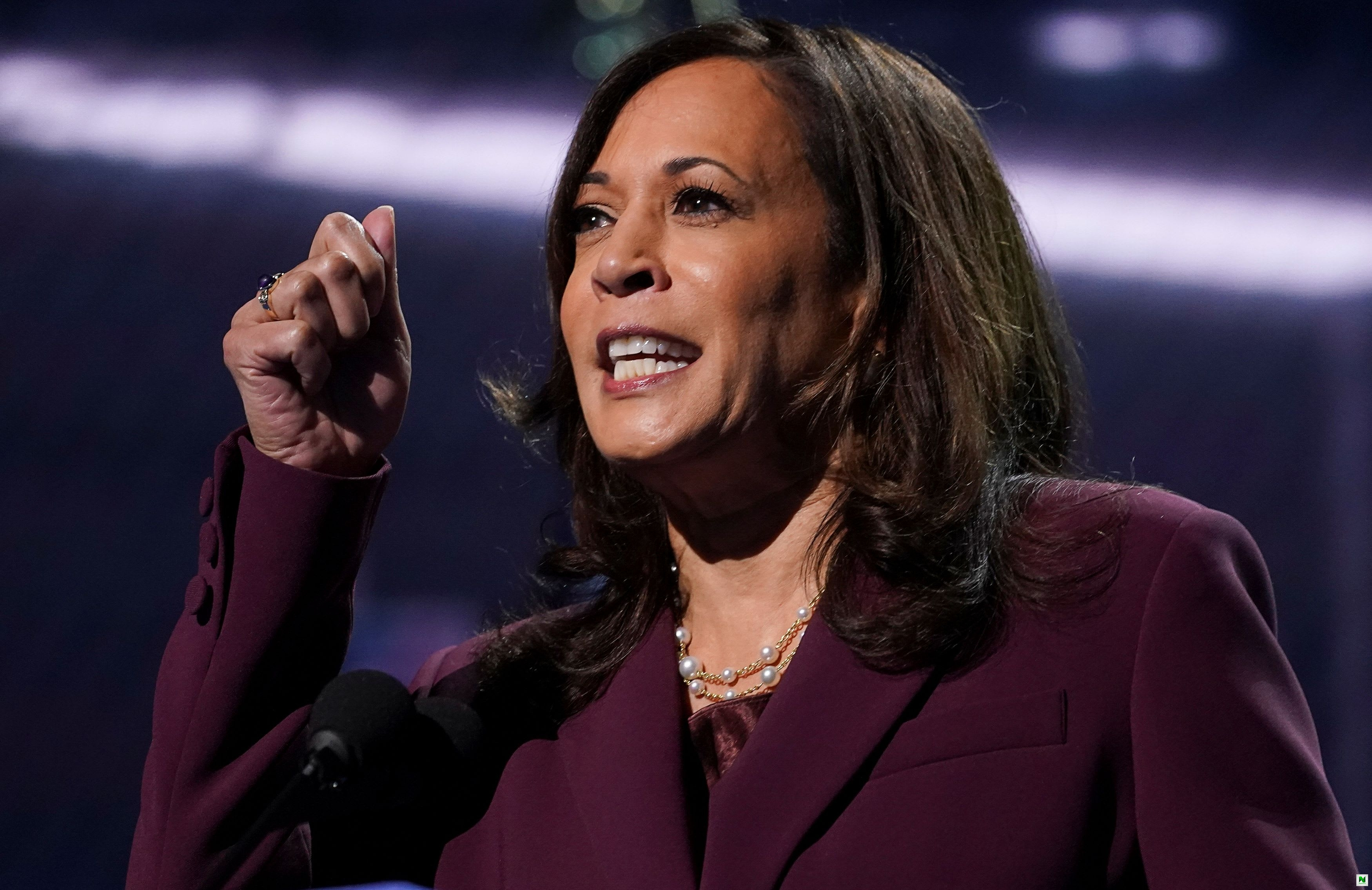 Do You Know?, US VP-Elect, Kamala Harris' Niece Is Married To A Nigerian (Picture)