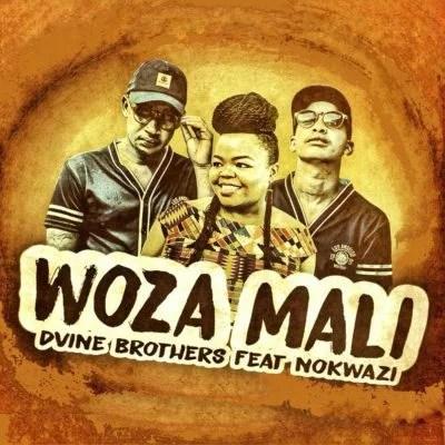 by Divine Dvine Brothers ft. Nokwazi - Woza Mali Mp3 Audio Download