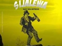 Nay Wa Mitego - Sijalewa (Audio + Video) 2 Download