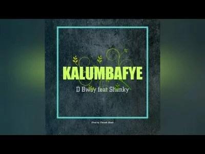 D Bwoy Ft. Shenky Shugah - Kalumbafye Mp3 Audio Download