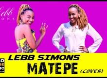 King Monada - Matepe (Lebb Simons Cover) 14 Download