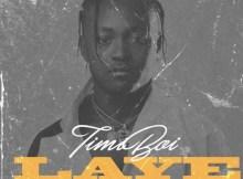 TimiBoi - Laye (Prod. by Spotless) 2 Download