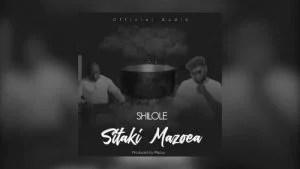 Shilole - Sitaki Mazoea Mp3 Audio Download