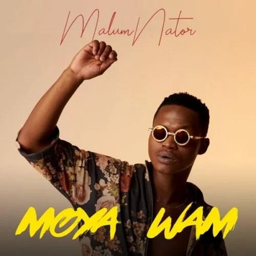 Moya Wami EP by Malumnator - Moya Wam