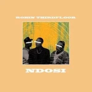 Robin Thirdfloor - Ndosi