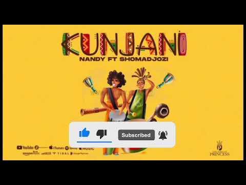 Nandy ft sho madjozi - Kunjani (Official Audio)