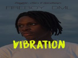 fireboy vibration free beat
